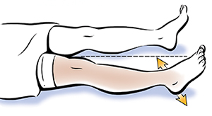 Legs from waist down showing abduction/adduction.